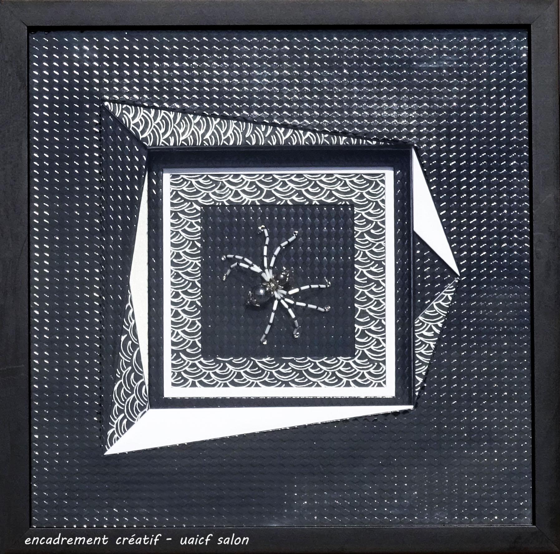 Araignée Josepha